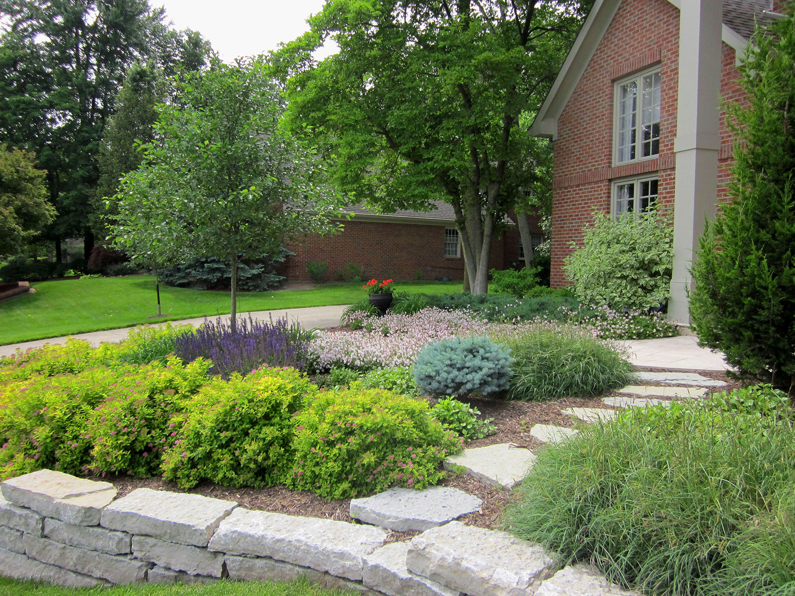 Form water garden with oxygenating plants and adjacent patio seating